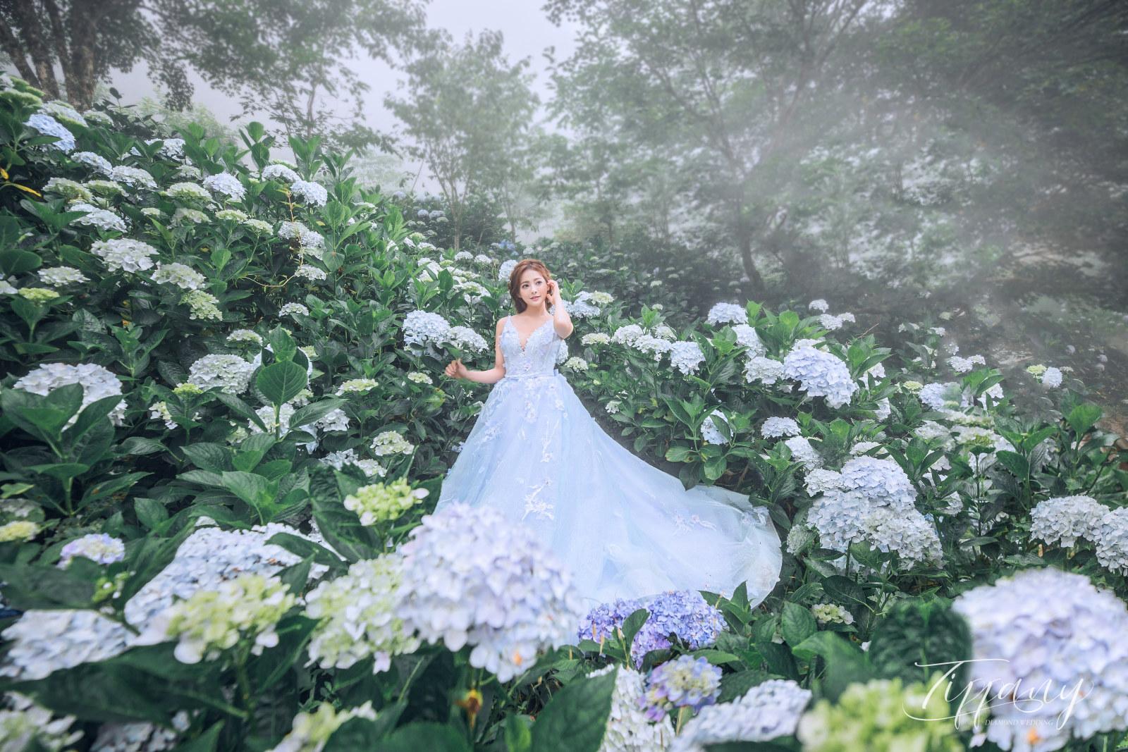 繡球花婚紗照 台中帝芬妮婚紗攝影