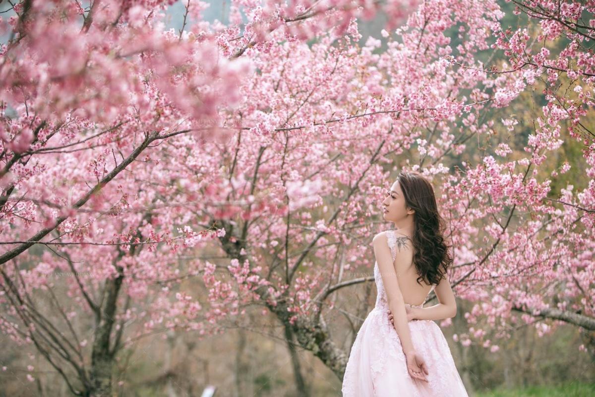 花樣婚紗裡的繾綣柔情 台中婚紗攝影公司推薦 拍婚紗景點